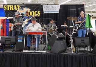"""Great Music w/ local Band """"Stray Dogs"""""""