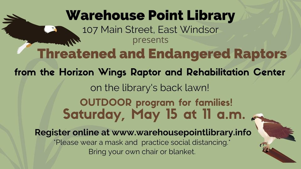 Threatened and Endangered Raptors @ Warehouse Point Library